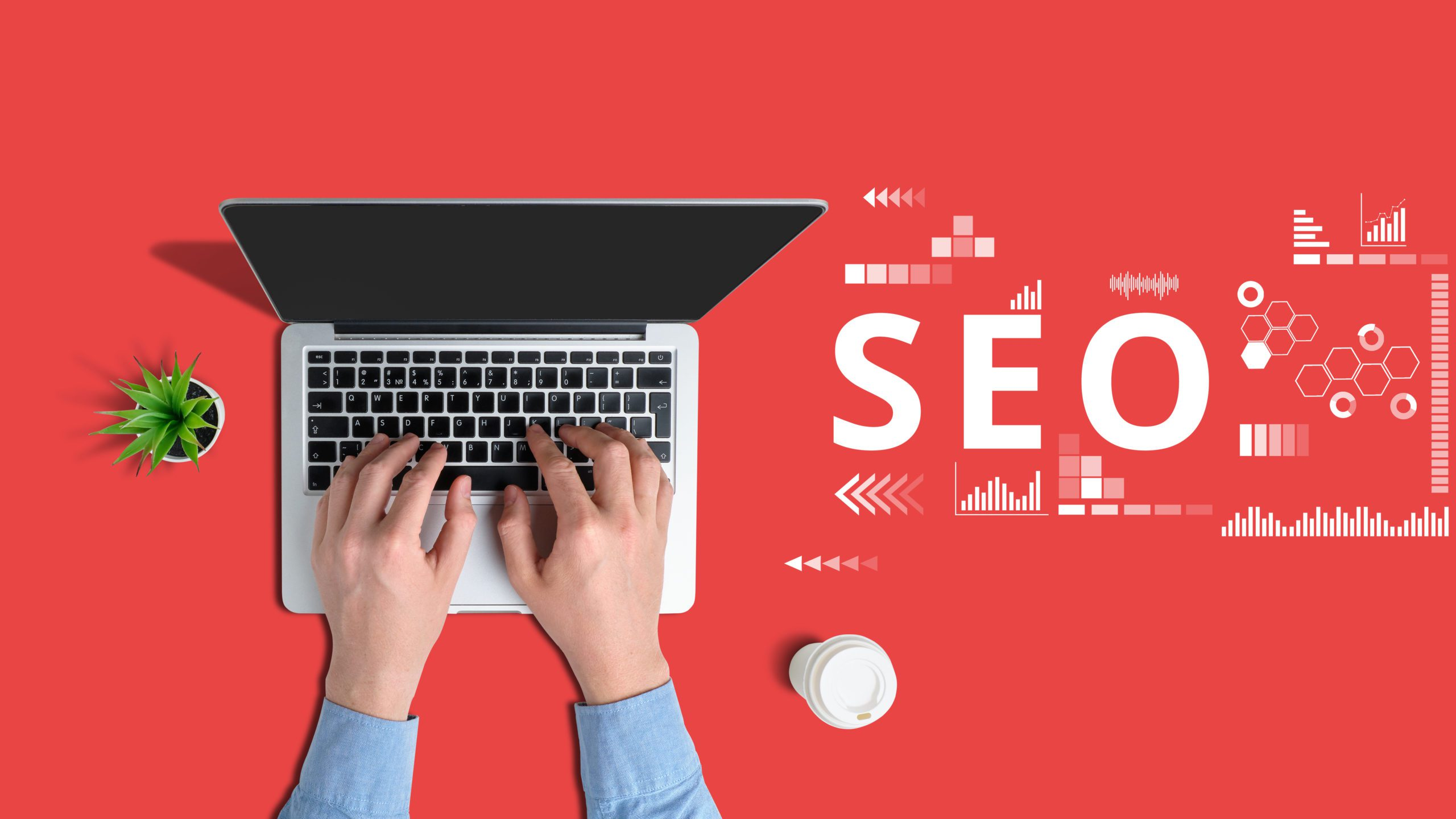 What Do SEO Specialists Do?