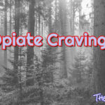 Learn The Secret Of How To Beat Opiate Cravings Before They Beat You