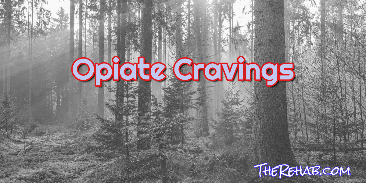 How To Beat Opiate Cravings