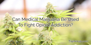 Can Medical Marijuana Be Used To Fight Opioid Addiction?