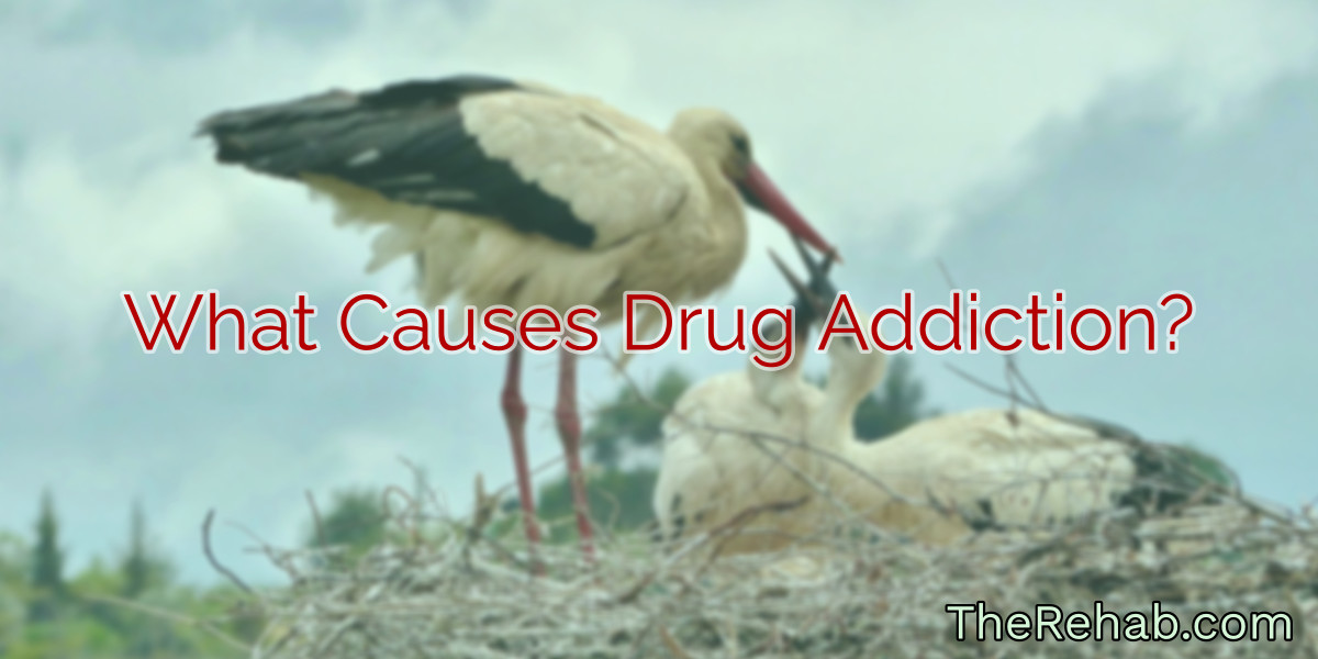 what causes drug addiction?
