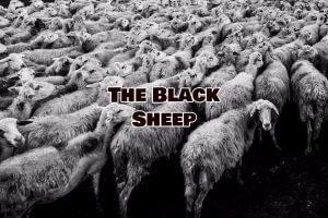Black Sheep and Drug Addiction