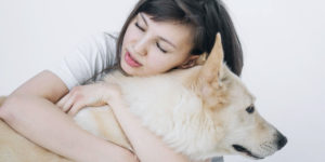 Can I Bring My Pet To Rehab? Does Animal Assisted Therapy Work?